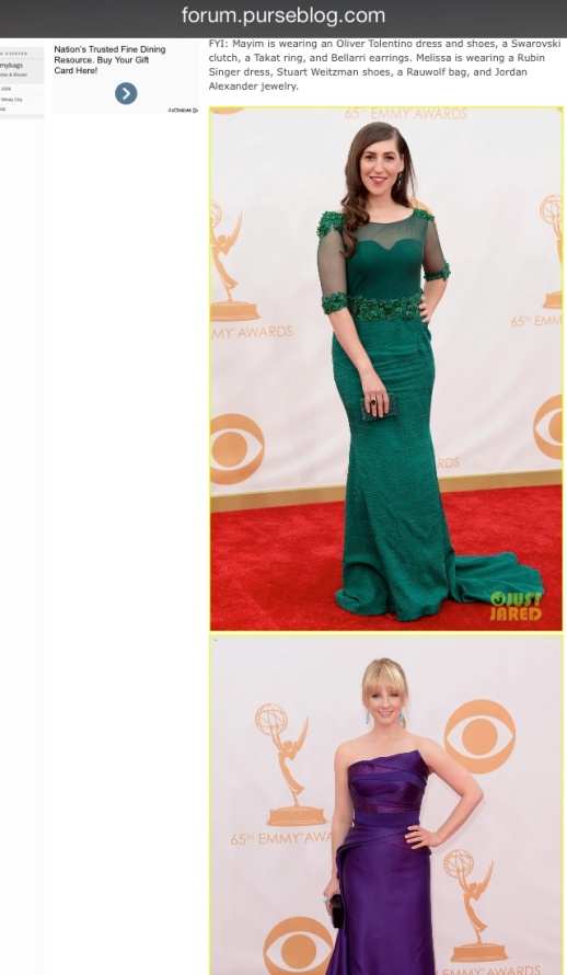 Purse Blog barfitoarea.ro Press Clipping Melissa Rauch wearing Rubin Singer at 65th EMMY Awards Red Carpet
